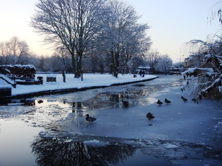 Winter on the canal in Berkhamsted